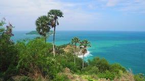 Isla tropical con las palmeras y el mar almacen de metraje de vídeo