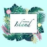 Isla tropical de la plantilla con las hojas tropicales stock de ilustración