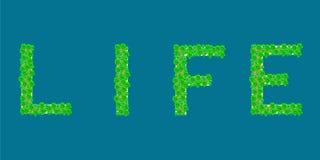 Isla tropical de la vida de la palabra Imágenes de archivo libres de regalías
