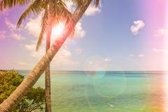 Isla tropical del estilo del vintage Foto de archivo libre de regalías