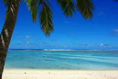 Isla tropical del paraíso, un motu en una laguna imagenes de archivo