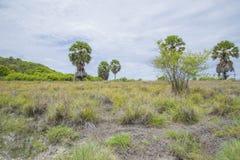 Isla tropical deshabitada en el golfo de Tailandia Fotografía de archivo
