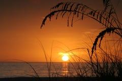 Isla tropical en la puesta del sol Fotografía de archivo libre de regalías