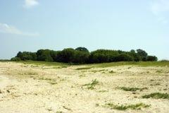 Isla verde fotos de archivo libres de regalías