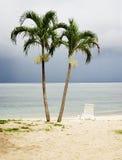 Isla verde. Fotos de archivo
