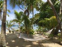 Isla verde foto de archivo libre de regalías