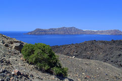 isla volcánica Nea Kameni y el único arbusto en él Fotos de archivo