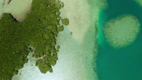 Isla y arrecife de coral tropicales, Filipinas, Palawan metrajes