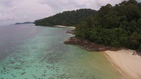 Isla y bosque metrajes