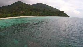Isla y bosque almacen de video