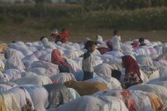 ISLAM FASTEST GROWING RELIGION. Children are playing between rows of praying Muslim women, at Klaten, Java, Indonesia. A new survey by the US based-Pew Research royalty free stock image