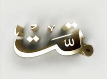 Islamic art 050 Stock Image