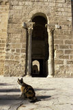 Islamic fort- Tunisia Stock Photos