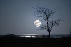Islan de Grado la luna Fotografía de archivo
