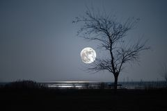Islan von Grado der Mond Stockfotografie