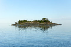 Island. Stone islet with pine wood in Ladoga lake Stock Photography