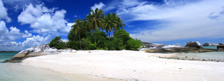 The island. Wonderful island with white sand beach and clear blue sky Stock Images