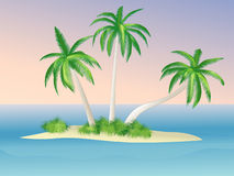 Island. With palms at dawn royalty free illustration