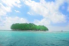 The island stock image