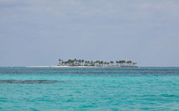 Island of the Bahamas. Small island from the Bahamas lost in the middle of the caribbean sea Stock Images