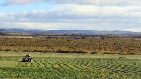 Island-Bauernhof lizenzfreies stockbild