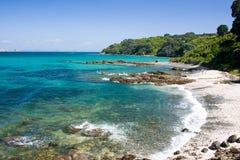 Island beach. Sunny beach at Tiri Tiri Matangi Island. Auckland, New Zealand royalty free stock image