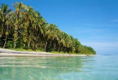 Island beach in the Caribbean sea Royalty Free Stock Image
