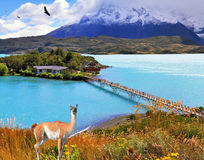 Island and beach connect easily bridge. Dreamland Patagonia. In the center of the lake Pehoe - small island with hotel. Island and beach  connect easily bridge Stock Photo