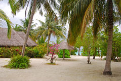 Island Beach Cottage with Trees and Little Rest Hut Stock Photography