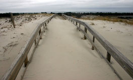 Island Beach State Park. Miles of sand dunes and white sandy Stock Photography