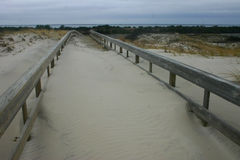 Island Beach State Park. Miles of sand dunes and white sandy bea Stock Photo