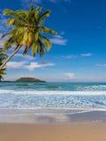 Island beach on summer Stock Photos