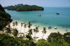 Island Beach, Thailand. Beautiful beach scene on island in Thailand with boats and palm trees Stock Images
