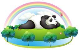 An island with a big panda sleeping Royalty Free Stock Photography