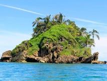 Island bocas. Bird observing on island, located in Bocas del Toro Panama Stock Photography