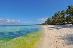 Island of Boracay Stock Image