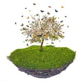 Island with butterfies above green grass and spring apple tree Stock Image