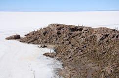 Island with Cactuses in a salt desert of Salar de Uyuni Royalty Free Stock Photos