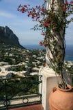 Island of Capri Stock Images