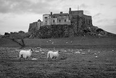 Island Castle Stock Photo
