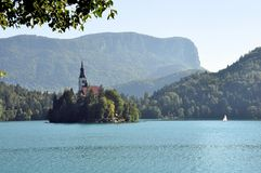 Island and castle of Bled in the early morning Stock Image