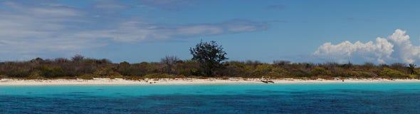 Island catalina Royalty Free Stock Image
