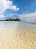 Island with coconut palms Stock Image