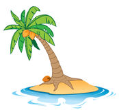 Island. Coconut tree on empty island Stock Photo