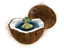 Island in coconut Stock Photo