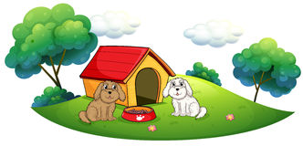 An island with a doghouse and two puppies Stock Image