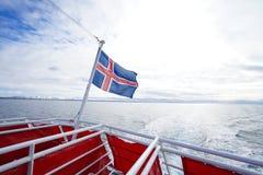 Island flagga royaltyfri fotografi