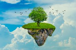 The island floats in the sky with 1 tree on the island. 3D royalty free stock photos