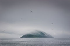 Island in fog 2 Stock Photo