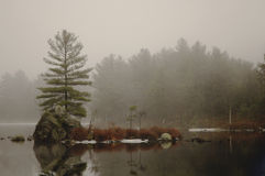 Island in the fog. Small island on foggy lake royalty free stock photography